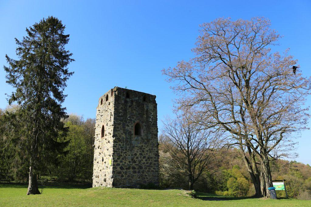 Odenwald Waldnerturm Vierritterturm