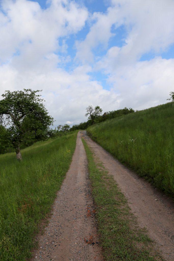 Rimbach - die Bach 75