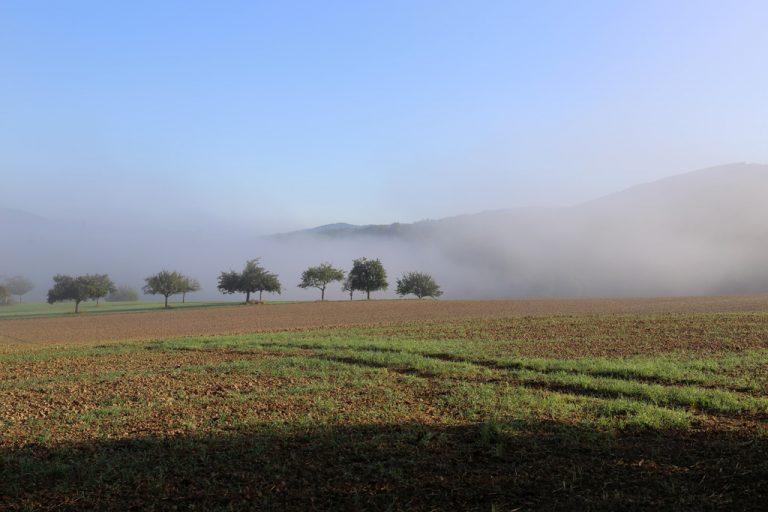 Hochnebel im September